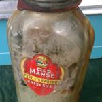 vintage old manse preserves bottle jar