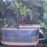 vintage vegetable drawer planter